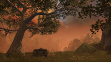 hunter's glade (5)